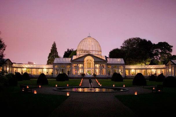 syon park conservatory`