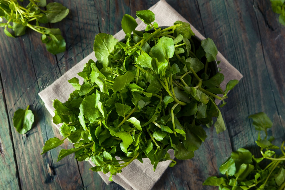 Eating in Season This May - Cooking with Watercress